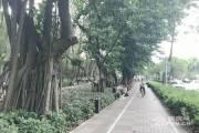 时尚蜗族-华侨城东方花园